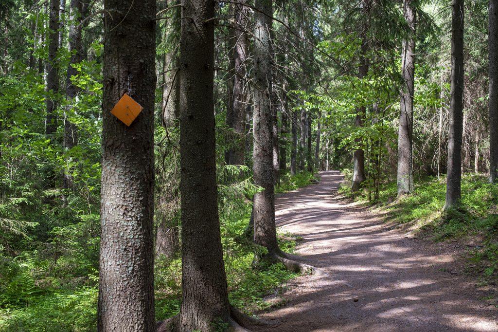 Kulkuväylä kansallispuistossa